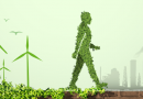 الإستدامة البيئية