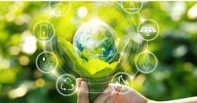 لإعلام آلية لتحقيق الشفافيةفي مجال البيئة